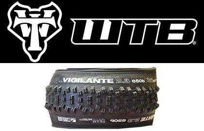 WTB Tires - Expert Cycles