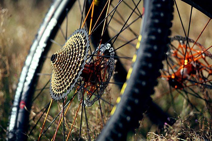 Custom Wheel Builds | Custom Built Bike Wheels - Expert Cycles
